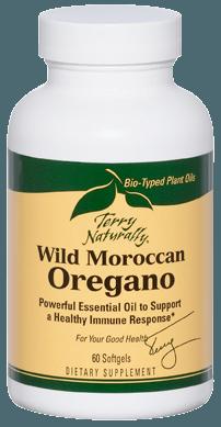 Wild Moroccan Oregano