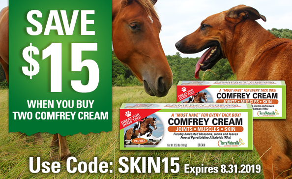 SAVE $15 When you Buy 2 Comfrey Cream