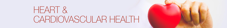 Heart & Cardiovascular Health
