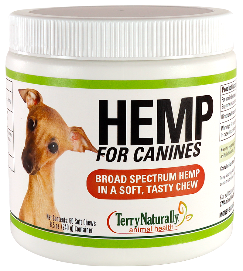 Hemp for Canines
