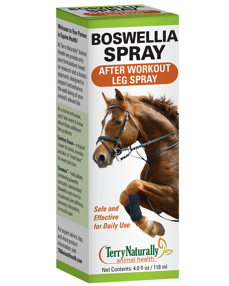 Boswellia Spray